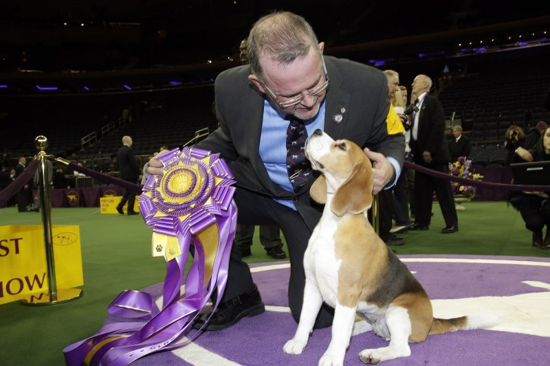 Westminster Dog Show Time And Network