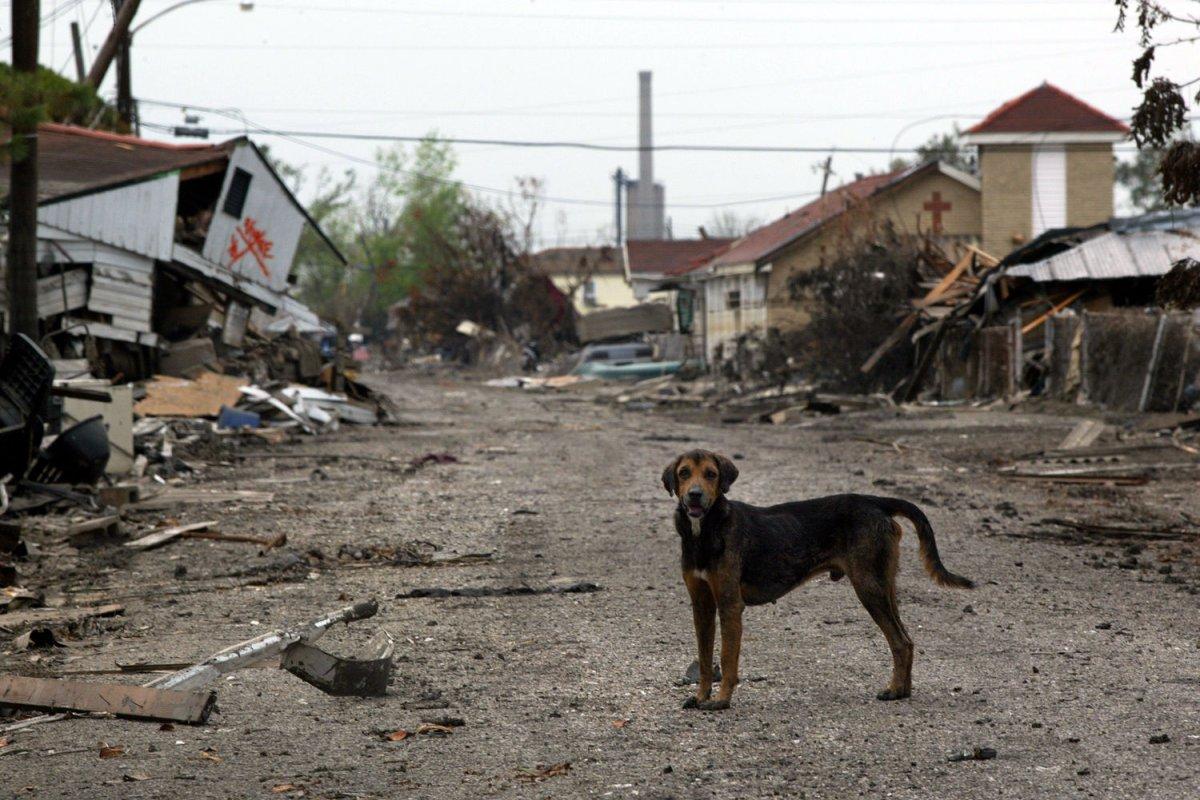 U S Found Liable For Hurricane Katrina New Orleans