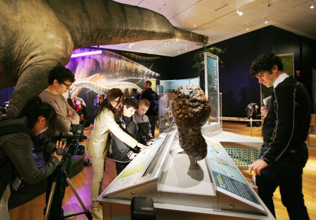 Museum Of Natural History Nyc Dinosaur Exhibit
