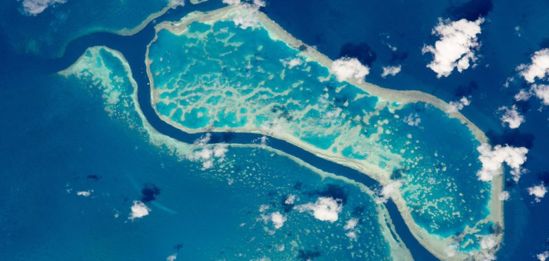 Rising sea levels may help select coral reefs - UPI.com