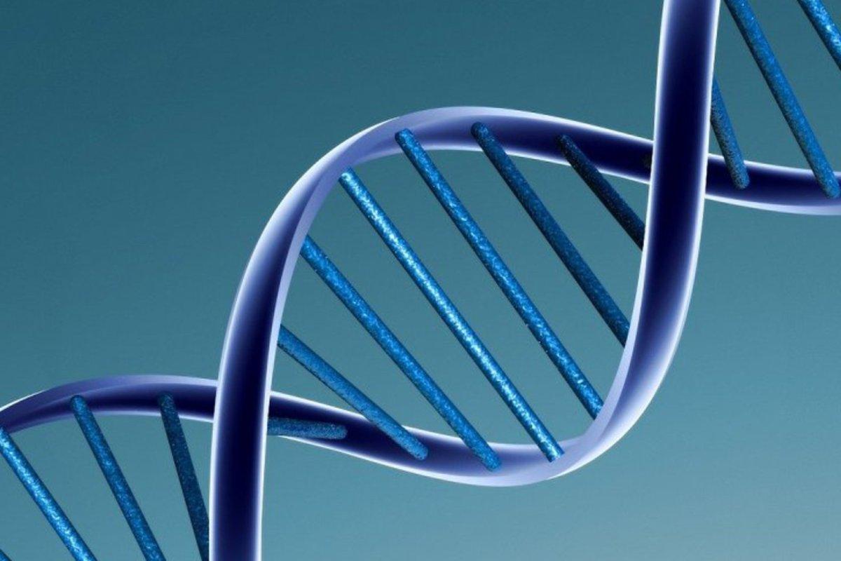 MIT scientists create method to label, retrieve DNA data files - UPI News