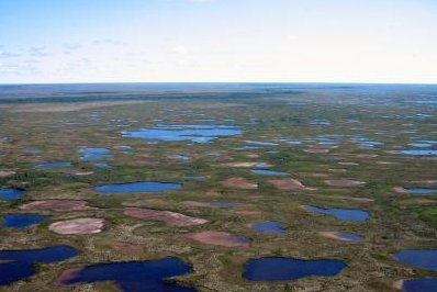 Canadian subarctic lakes drying up at accelerated rate