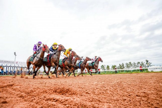 They're off and running at the sixth annual Chinese Equine Cultural Festival race meeting conducted by the China Horse Club at Yiqi Racecourse in Inner Mongolia, China. Photo courtesy of CHC