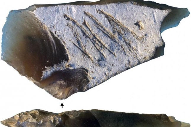 Researchers determined the engravings on the face of Paleolithic stone recovered from Crimea were made with symbolic and communicative intention. Photo by Ana Majkić, et al./PLOS One