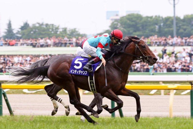 Indy Champ upsets Sunday's Grade 1 Yasuda Kinen at Tokyo Racecourse, defeating Aerolithe and Almond Eye. Photo courtesy of Japan Racing Association