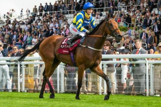 Trueshan returns from winning Wednesday's Group 1 Goodwood Cup. Photo courtesy of Goodwood Racecourse