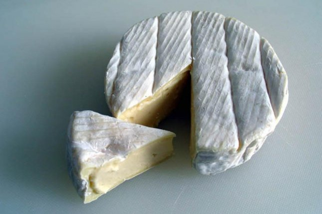 Simply by letting molds hang out with cheese curds for a few weeks, scientists were able to turn wild fungal strains into tamer strains similar to their domesticated cousin, Penicillium camemberti, the fungus that gives Camembert cheese its unique flavor. Photo by Nataraja, 2004, G. Anfossi/Wikimedia Commons