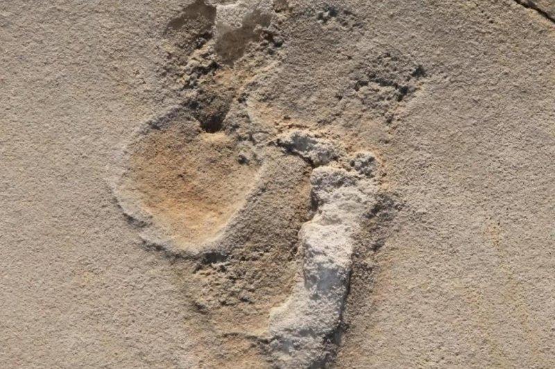 The new human-like footprint has a big toe and ball on the sole like human feet. Photo by Uppsala University