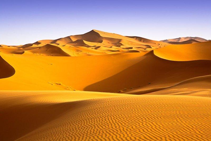 how hot sahara desert