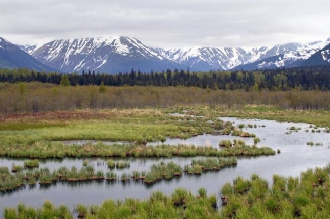 Scientists collected Alaskan permafrost cores and measure mercury levels for nearly a decade as part of the newly published study. Photo by AGU