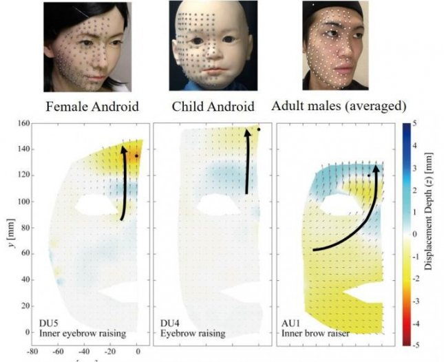 Researchers used metallic dots and high-speed cameras to observe the differences in the movements and patterns of human and android facial expressions, finding flow lines as human faces move are much more curved than on androids. Photo by Ishihara, et al./Frontiers in Robotics and AI