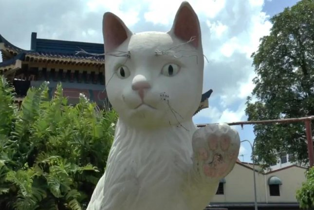 The city of Kuching, Malaysia, is known as Cat City and is home to multiple large cat statues. Screenshot: Newsflare