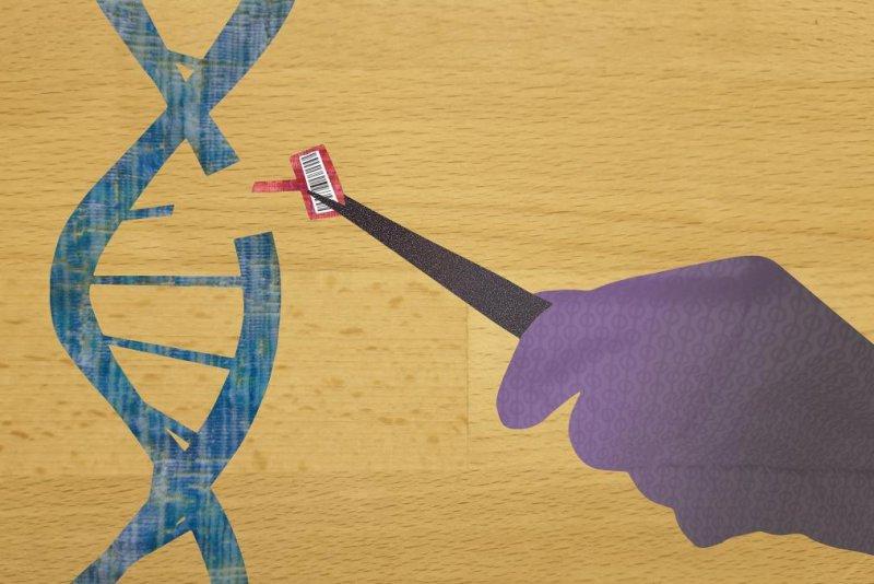 New CRISPR platform to make gene-editing more precise