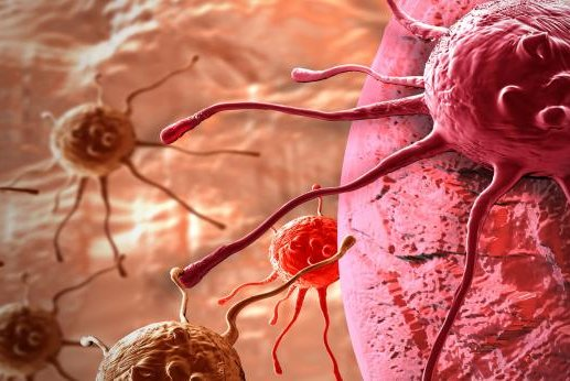 A new approach for targeting supporting cells may boost chemotherapy performance, scientists say. Photo by Destroyer of furries/Wikimedia Commons