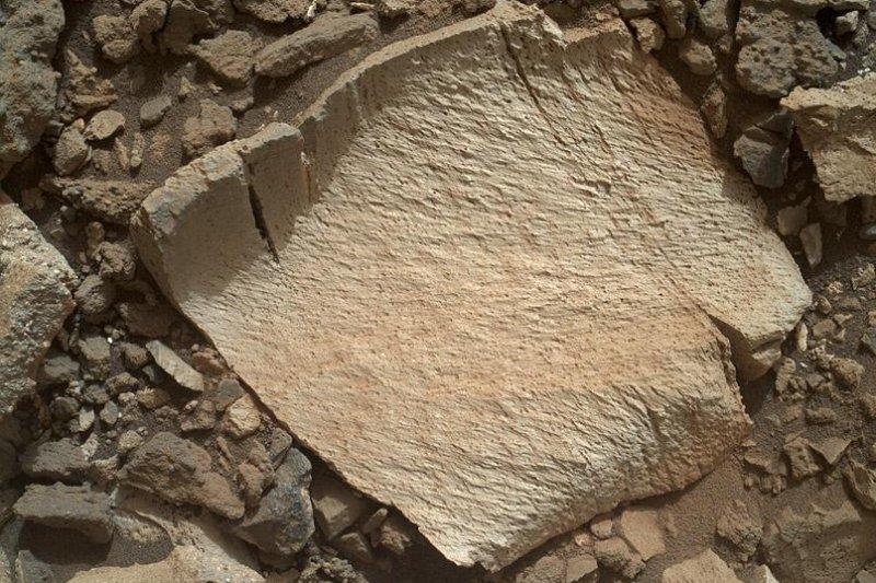 A silica-rich rock fragment, dubbed 'Lamoose.' Photo by NASA/JPL