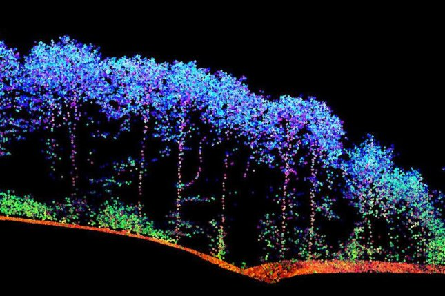 A 3-D map of surface vegetation built using the laser technology. Photo by the Vienna University of Technology