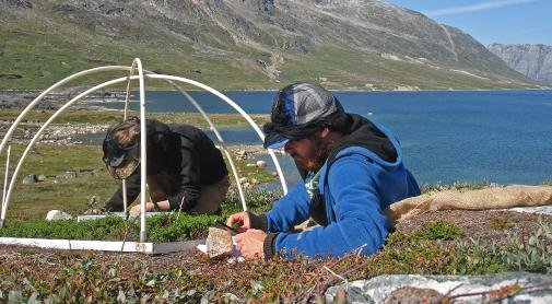 Researchers measure the release of volatile compounds by the tiny plants in the arctic tundra. Photo by University of Copenhagen/Magnus Kramshoj