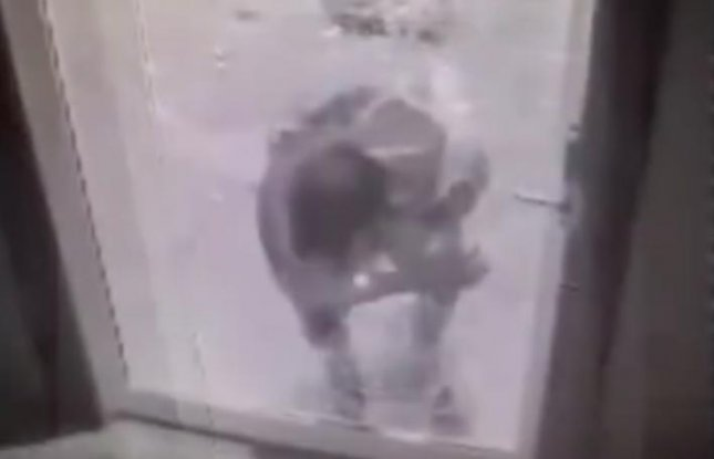 Bar burglar deftly crawls through hole in unlocked glass door upi planetlyrics Image collections