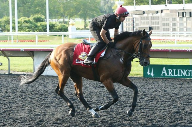 Irish raider Deauville tests the Arlington Park track Thursday as he prepares for Saturday's Arlington Million XXXVI. Photo courtesy of Keely Sorrows/Coady Photography