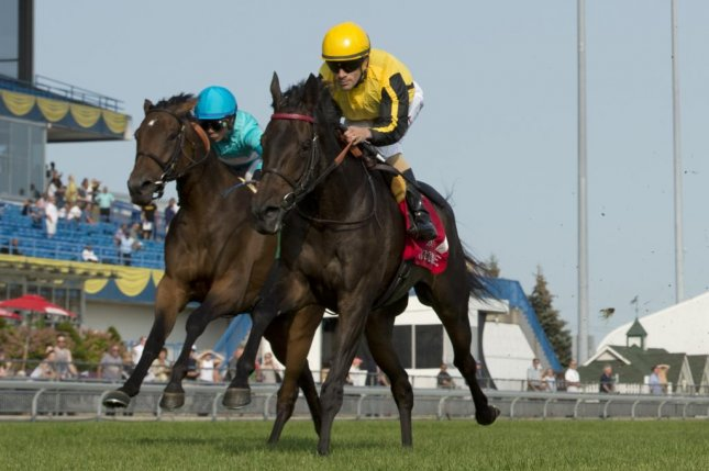 Quidura, seen winning the Grade II Canadian Sept. 16, returns to action at Woodbine Sunday in the Grade I E.P. Taylor. (Woodbine/M. Burns photography)