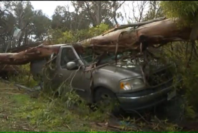 Georgiy Karpekin's truck was taco'd when strong winds brought a tree down on its roof. Screenshot: KTXL-TV