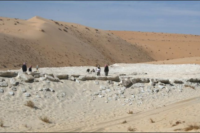 Researchers found ancient human and animal footprints in a lake deposit in the western Nefud Desert, Saudi Arabia. Photo by Palaeodeserts Project