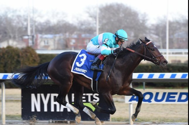 Mind Control, seen winning the Jerome Stakes on New Year's Day, is among the favorites for Saturday's Gotham Stakes at Aqueduct, a key Kentucky Derby stepping stone. NYRA photo, Susie Raisher