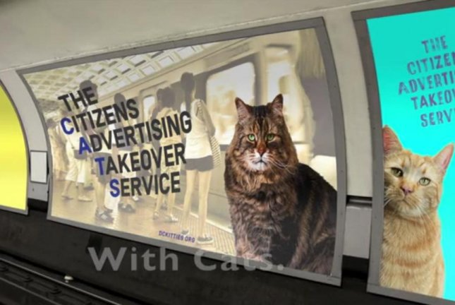The group that replaced all of the advertisements in a London subway station with cat photos last year is raising money to do the same this year to a Metro train station in Washington, D.C. Screenshot: The Citizens Advertising Takeover Service/Kickstarter