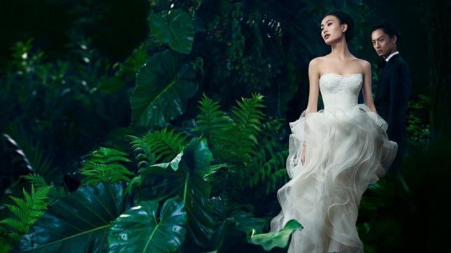 Vera Wang charges $500 to try on dress in China