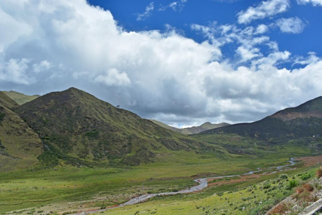 Researchers used plots in a Tibetan alpine meadow to test the relationship between biodiversity and disease. Photo by Shutterstock/Lyu Hu