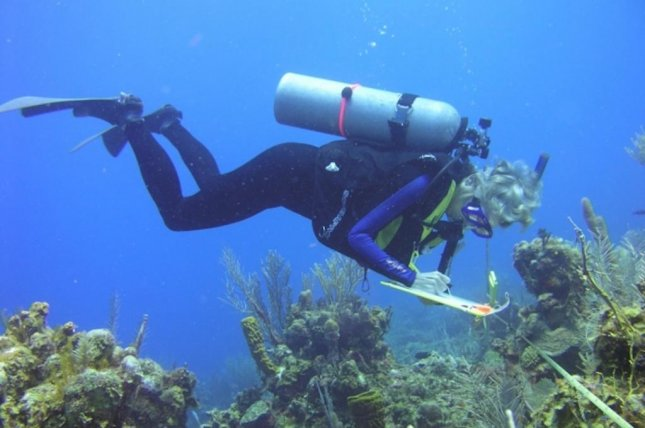 Scientists regularly measured temperature, salinity and visibility levels at remote Caribbean coastal sites over the course of 25 years, finding the areas are under environmental stress. Photo by Karen Koltes
