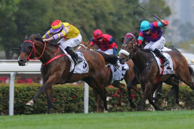 Ping Hai Star surges to victory in Sunday's BMW Hong Kong Derby, and could move into the picture for upcoming international Group 1 races. Photo courtesy of HKJC