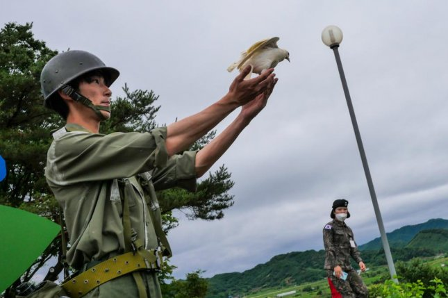 A soldier in Korean War-era uniform releases a dove near the Demilitarized Zone during a ceremony commemorating the 70th anniversary of the start of the Korean War on Thursday. Photo by Thomas Maresca/UPI