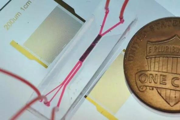 Researchers have developed a contact-free method of separating stray tumor cells in the bloodstream using the device pictured. Photo courtesy of Duke University