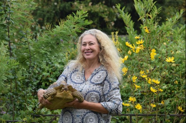 Sybil the tortoise was reunited with owner Catherine Painter 15 months after the reptile escaped from her home. Photo courtesy of the RSPCA