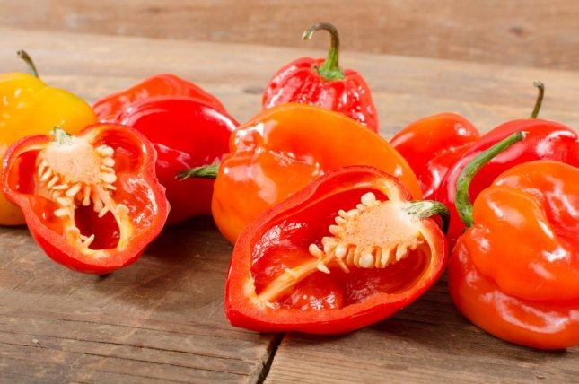 A previous study showed that in order to achieve the cancer-killing effects of capsaicin seen in mice, a 200-pound man would have to eat three to eight habenero peppers three times a week. Photo by thodonal88/Shutterstock