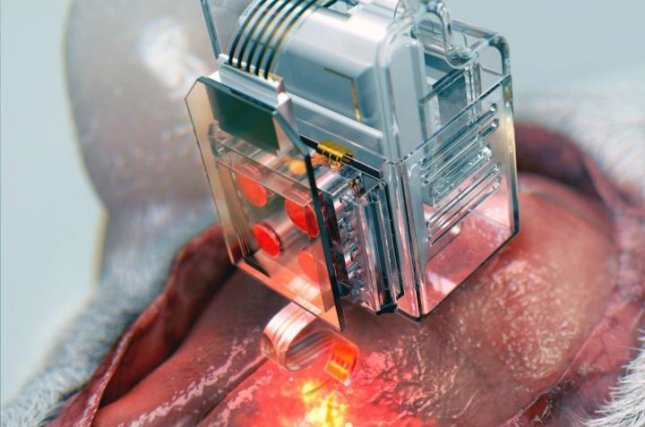 Scientists installed a reusable drug cartridge-turned-brain implant on a mice subject. The implant, which delivers drugs and light to manipulate neurons, is controlled by bluetooth technology via a smartphone interface. Photo by Korea Advanced Institute of Science and Technology