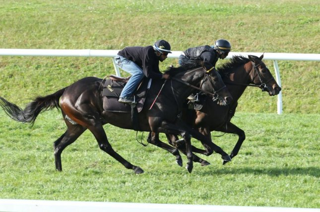 Lady Aurelia (inside), seen working out at Keeneland, carries American hopes on the first day of Royal Ascot Tuesday. Photo courtesy of Keeneland