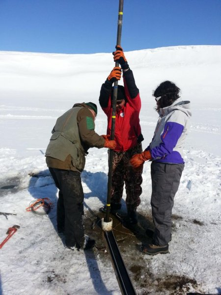 Researchers, pictured collecting core samples in St. Paul, Alaska, compared pollen grains from core and mire samples in order to determine the historical effects of climate change on vegetation. Photo by Jack Williams