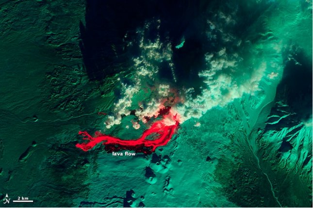 A false-color infrared satellite image of the Plosky Tolbachik volcano, showing lava flows (red.) Credit: NASA Earth Observatory