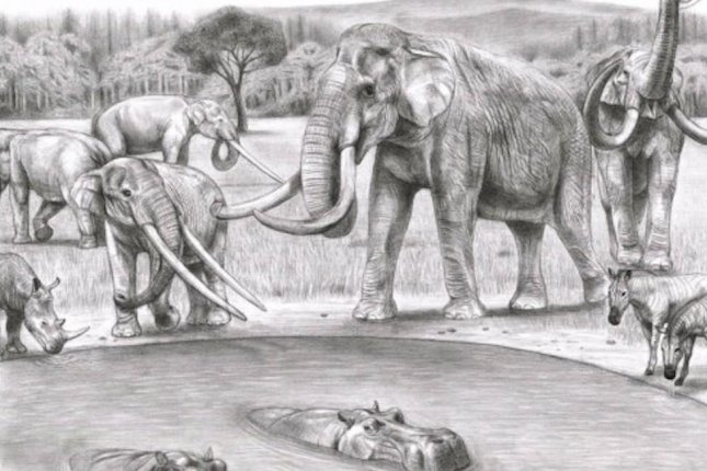Less than 2 million years ago, a variety of prehistoric elephant species were found throughout Europe and Asia -- but researchers say humans are not the only reason many of them are extinct. Photo by Tamura Shuhei