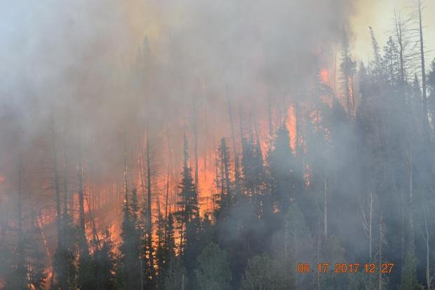 Utah wildfire: Country's largest active fire grows in size