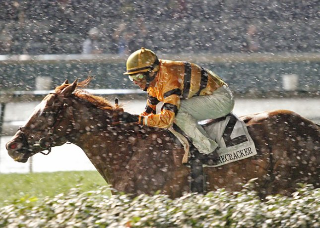 Wise Dan wins the Firecracker Handicap in the rain at Churchill Downs. (Churchill Downs photo by Reed Palmer)