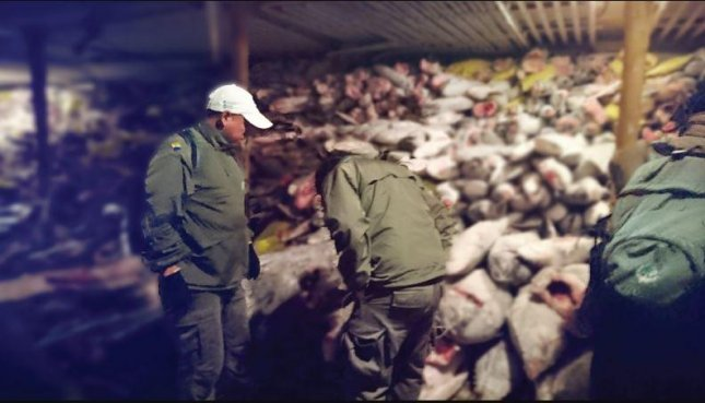 Ecuadorian officials inspect a Chinese fishing boat holding thousands of sharks illegally fished from waters in the Galapagos Marine Reserve on August 13. On Monday, the fishermen were sentenced to up to four years in prison. Photo by Ecuadorian Minister of the Environment