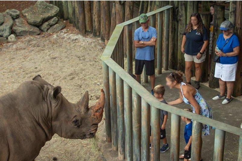 Child hurt falling into rhino exhibit at Florida zoo