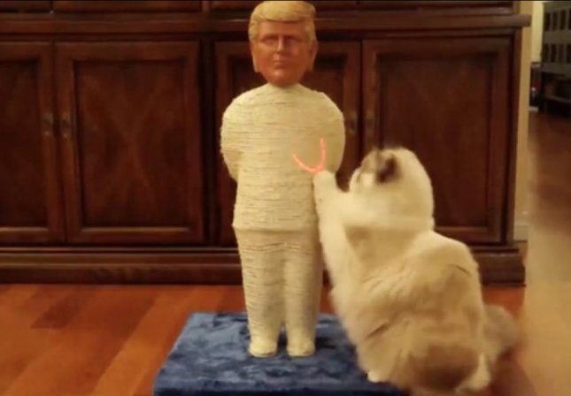 Canadian Kickstarter campaign Politikats is seeking funding to produce a line of scratching posts designed to look like political figures. Models include Donald Trump and Barack Obama while stretch goals have been set to produce designs of Vladimir Putin, Benjamin Netanyahu, Bernie Sanders and Hillary Clinton.