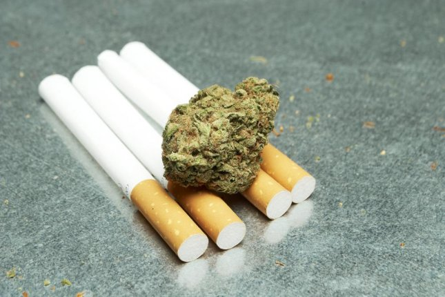 Researchers said that roughly 70 percent of marijuana users also smoke tobacco. Photo by Doug Shutter/Shutterstock