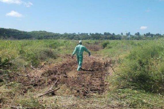 Cuban oil work moves toward exploration phase
