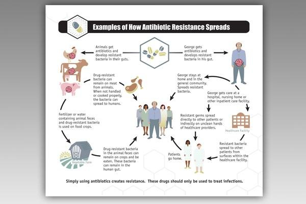 CDC: Livestock antibiotics linked to human deaths