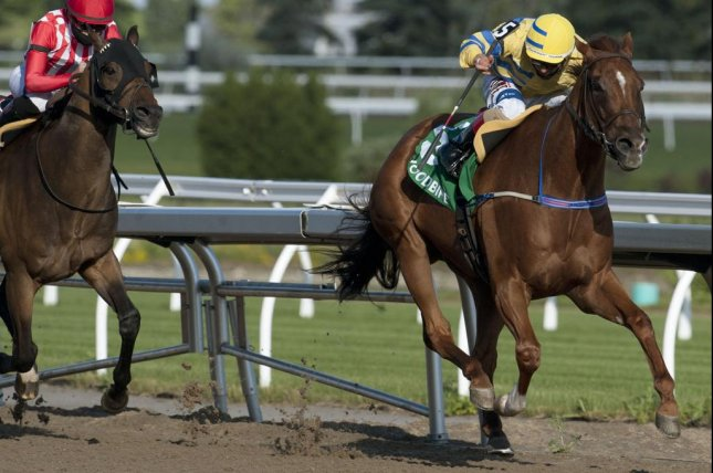 Pink Lloyd wins the Jacques Cartier Stakes for the fourth straight year Thursday. Photo courtesy of Woodbine Racecourse
